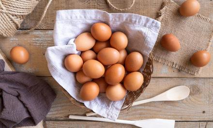 Ranking jajowarów 2021