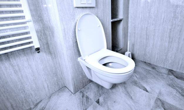 Ranking misek WC podwieszanych 2021