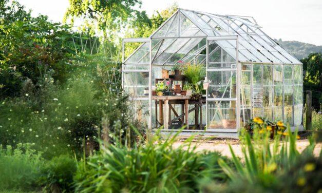 Ranking szklarni ogrodowych 2021
