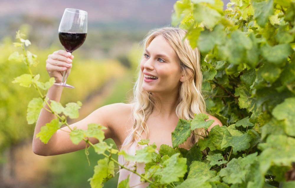 Ranking kieliszków do wina 2021